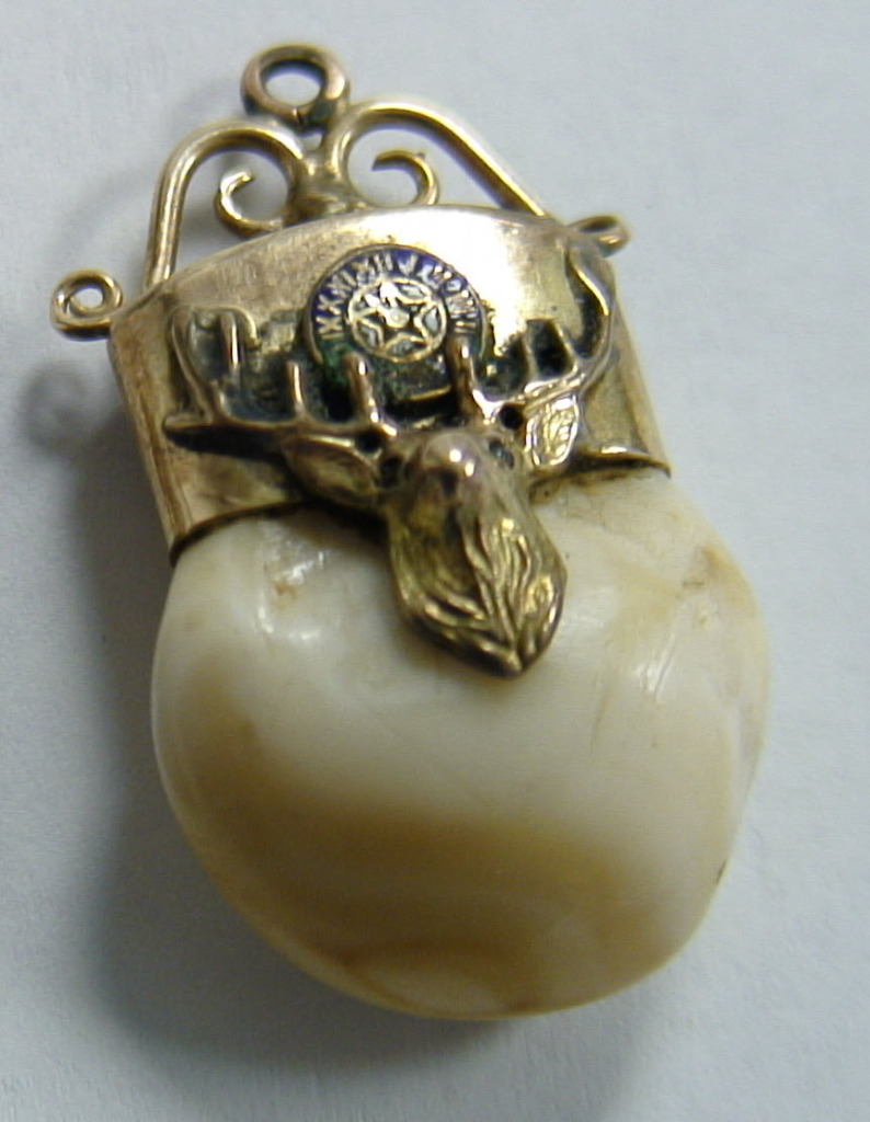 Gold Elks Tooth